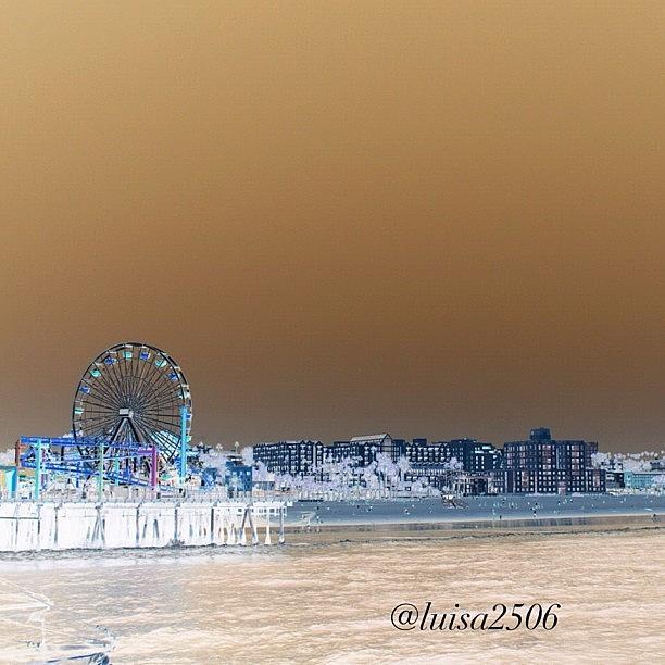Beautiful Photograph - Santa Monica by Luisa Azzolini