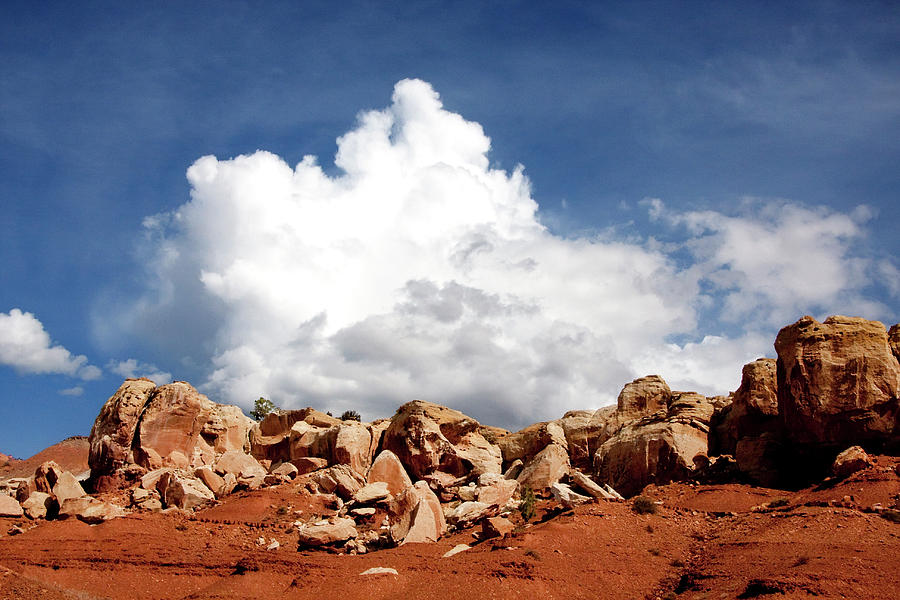 Southern Utah Photograph - Capitol Reef National Park by Southern Utah  Photography
