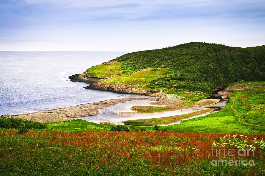 Coast Photograph - Atlantic Coast In Newfoundland by Elena Elisseeva