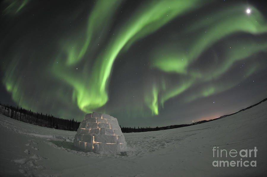 Yellowknife Photograph - Aurora Borealis Over An Igloo On Walsh by Jiri Hermann