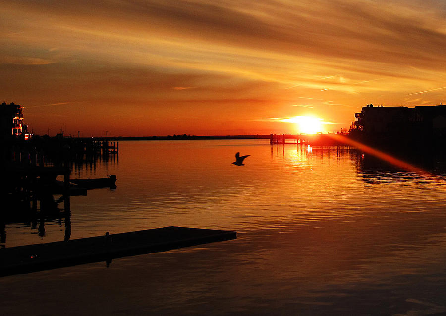 Bay Sunset Photograph - Bay Sunset by Mary McCusker