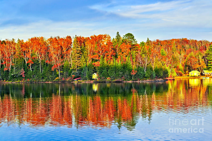 Lake Photograph - Fall Forest Reflections by Elena Elisseeva