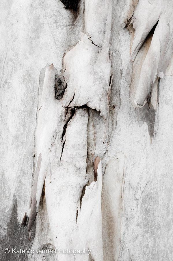 Abstract. Contemporary Photograph - Untitled by Kate McKenna