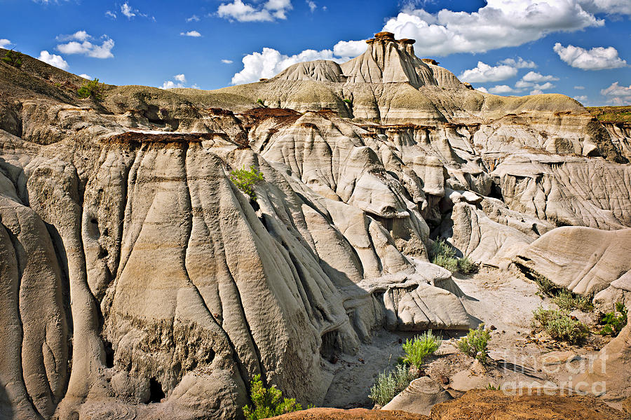 Badlands Photograph - Badlands In Alberta by Elena Elisseeva
