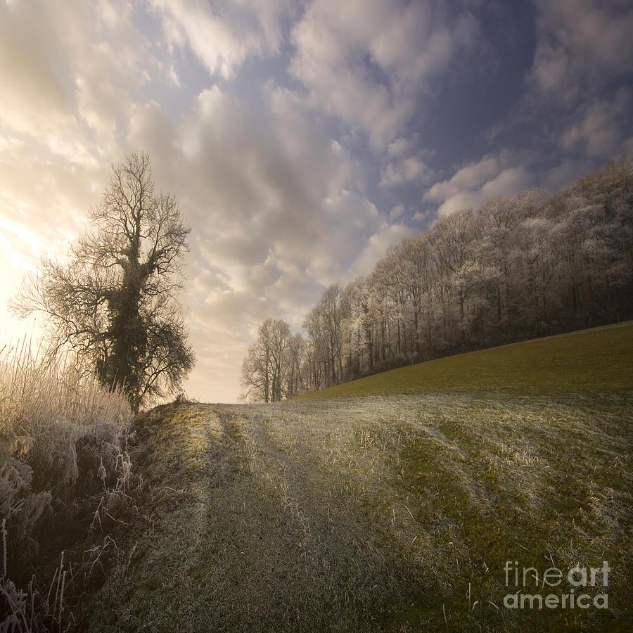 Wye Photograph - Frosty Landscape by Angel Ciesniarska