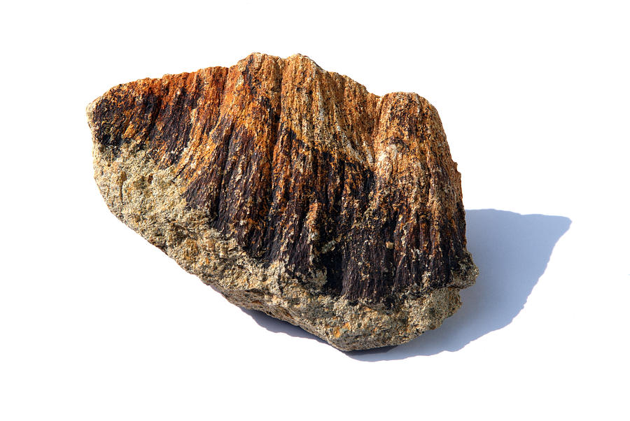 Shatter Cone Photograph - Rock From Meteorite Impact Crater by Detlev Van Ravenswaay