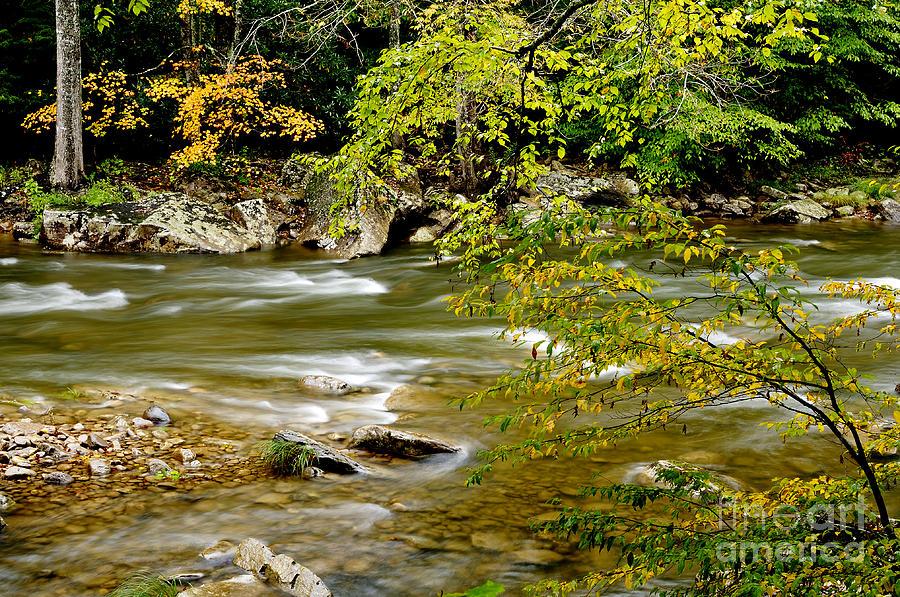 West Virginia Photograph - Fall Along Williams River by Thomas R Fletcher