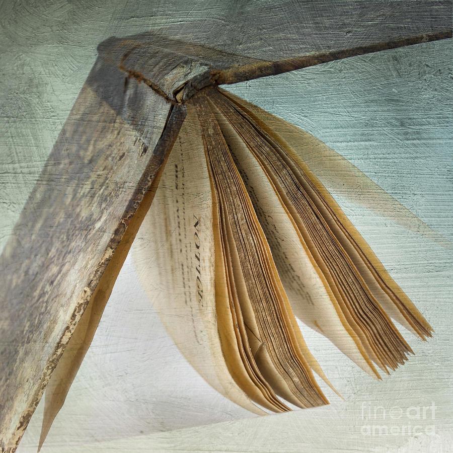 Texture Photograph - Old Book by Bernard Jaubert
