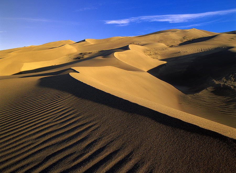 750 Foot Tall Sand Dunes Tallest Photograph by Tim Fitzharris