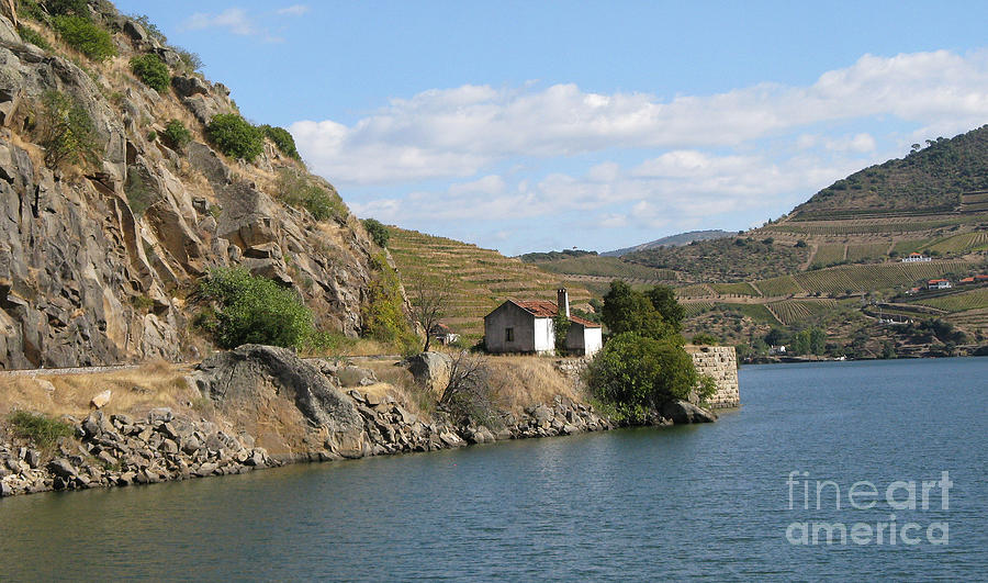 Nature Photograph - Douro River Valley by Arlene Carmel