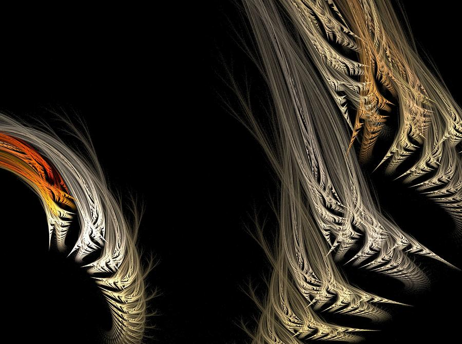 Fractal Flame Digital Art - Ferns by Michele Caporaso