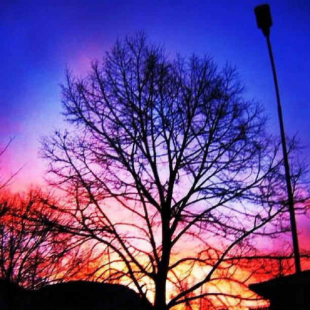 Beautiful Photograph - Sunset by Luisa Azzolini