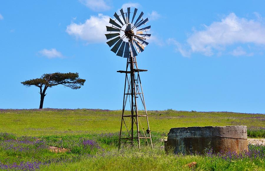 Windmill Water Pump Photograph By Werner Lehmann