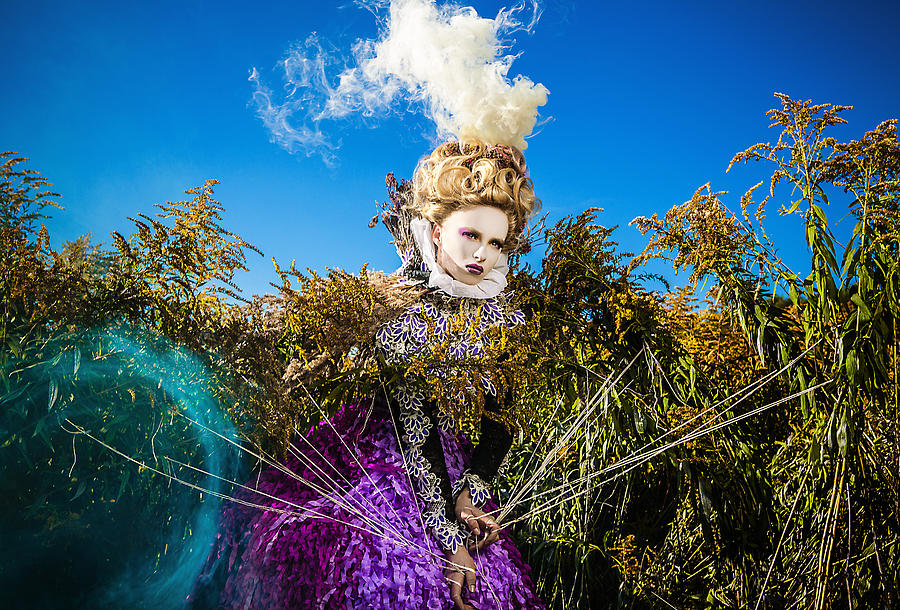 Artist Pyrography - Crossing A Solar Meadow. by Kireev Art