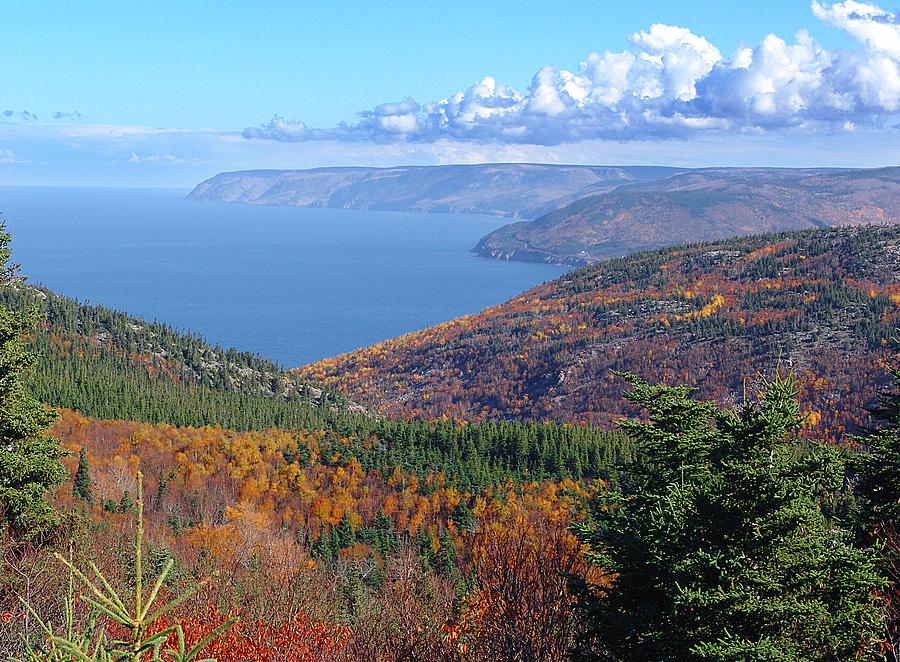 Cape Breton Island Photograph - A Cape Breton Autumn by George Cousins