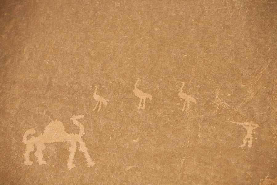 Wadi Rum Photograph - A Close View Of Ancient Petroglyphs by Taylor S. Kennedy