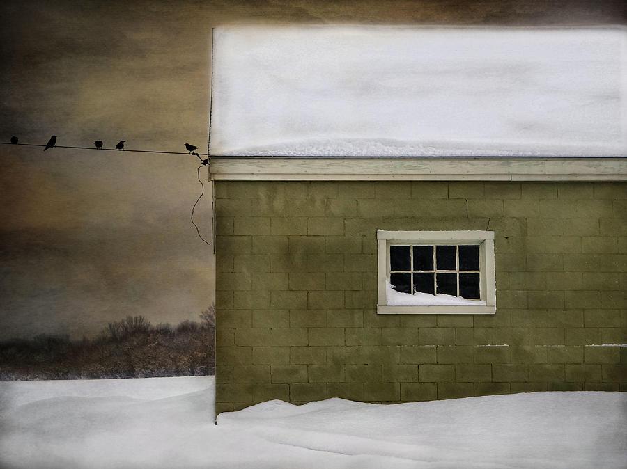 Barn Photograph - A Common Thread by Robin-Lee Vieira