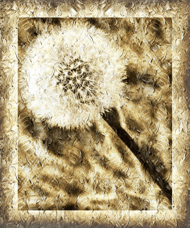 Dandelion Photograph - A Dandy Glow by Andee Design