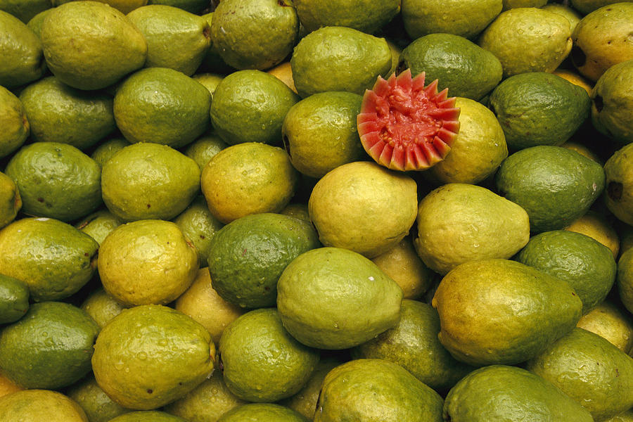 South America Photograph - A Display Of Guavas In An Open Air by Richard Nowitz