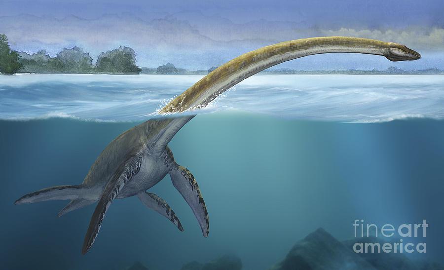 Horizontal Digital Art - A Elasmosaurus Platyurus Swims Freely by Sergey Krasovskiy
