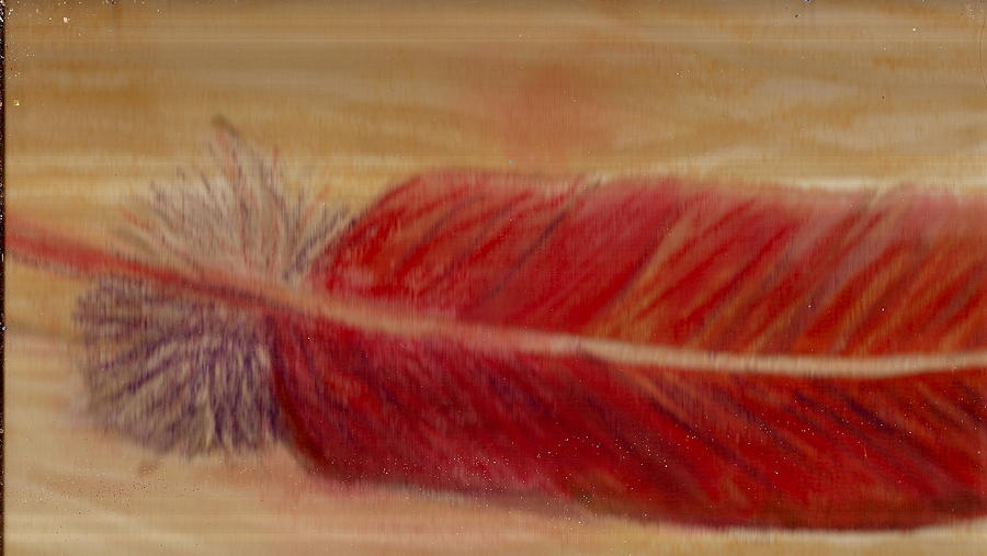 Red Painting - A Feather I Found by Anne-Elizabeth Whiteway
