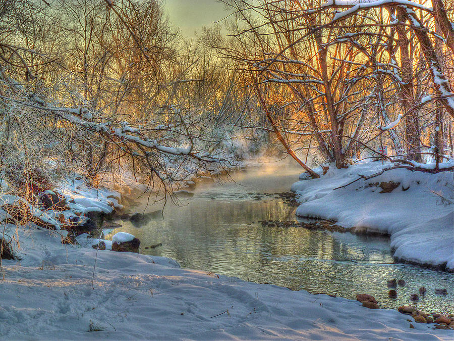 Winter Photograph - A February Face by William Fields