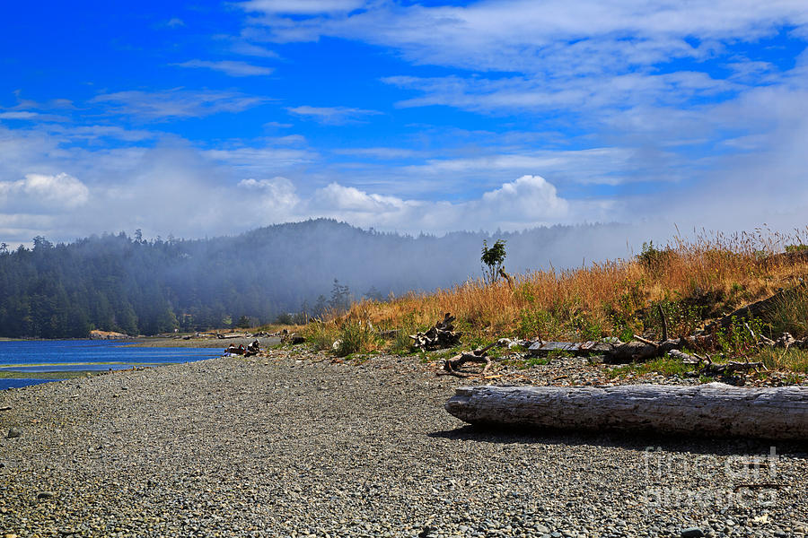 Fog Photograph - A Foggy Morning At Whiffin Spit by Louise Heusinkveld