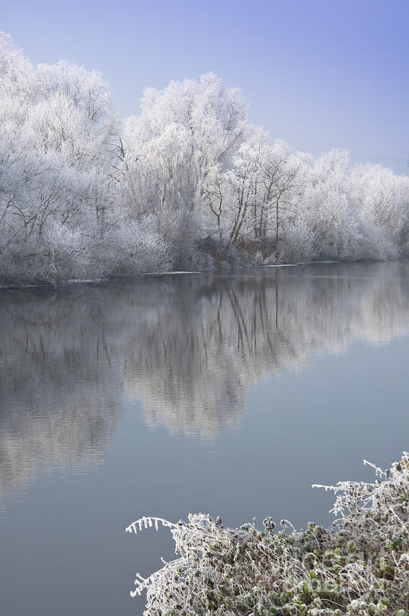 Christmas Photograph - A Frosty River Severn by Andrew  Michael