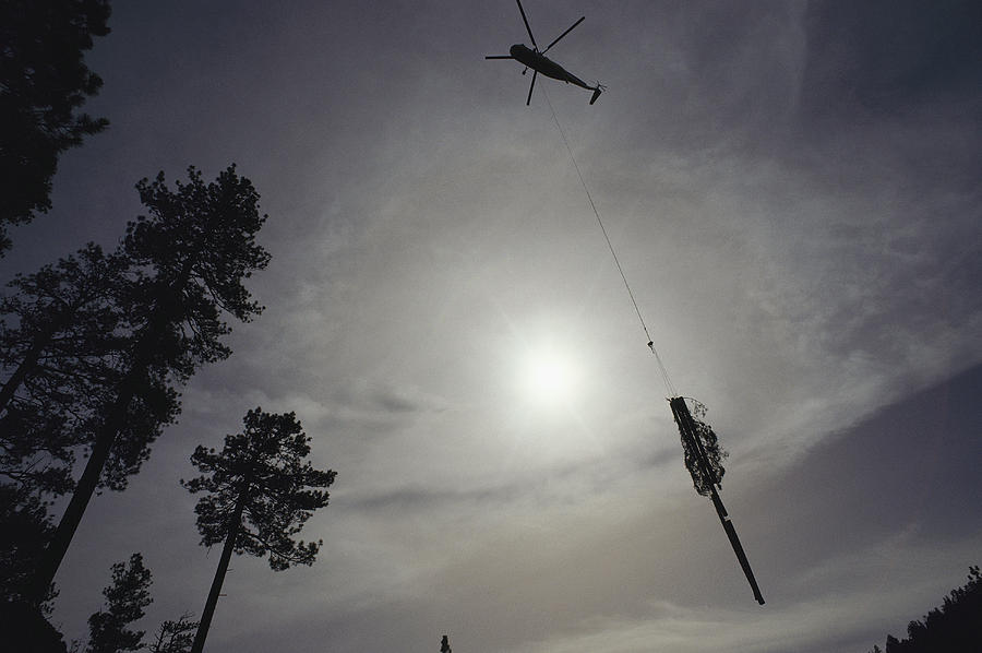 North America Photograph - A Helicopter Lifts Cut Timber by Joel Sartore