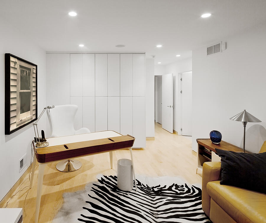 Inside Photograph - A Home Office. A Black And White Zebra by Christian Scully