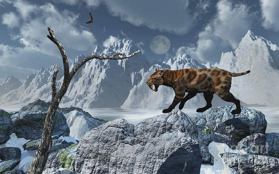 Digitally Generated Image Digital Art - A Lone Sabre-toothed Tiger In A Cold by Mark Stevenson