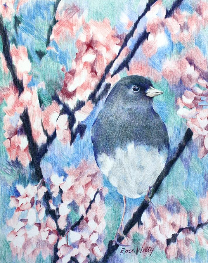 Junco Drawing - A Lovely View by Rose Welty