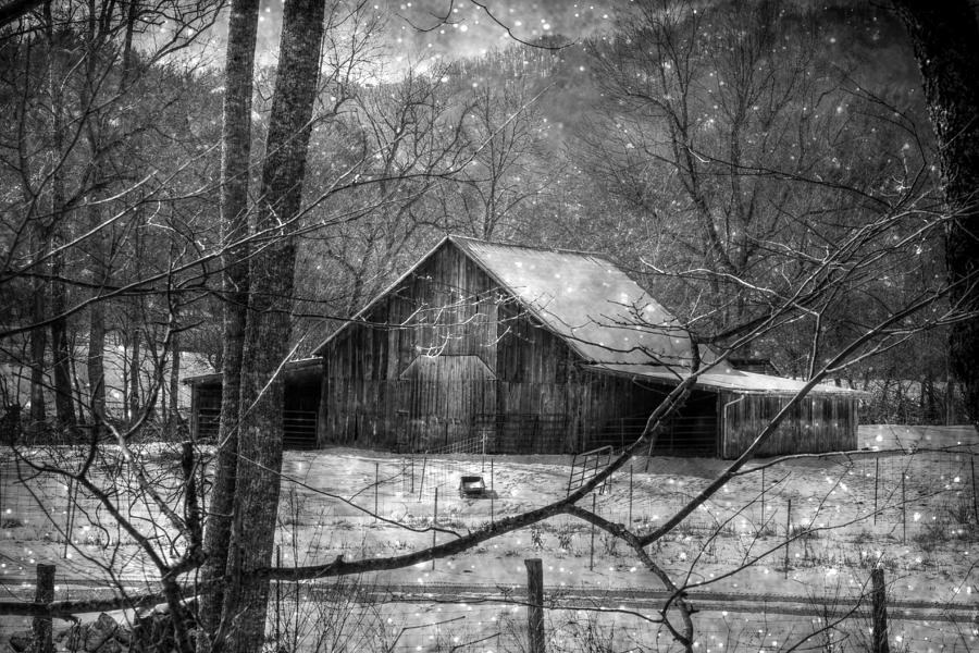 Black And White Photograph - A Memory In Black And White by Christine Annas