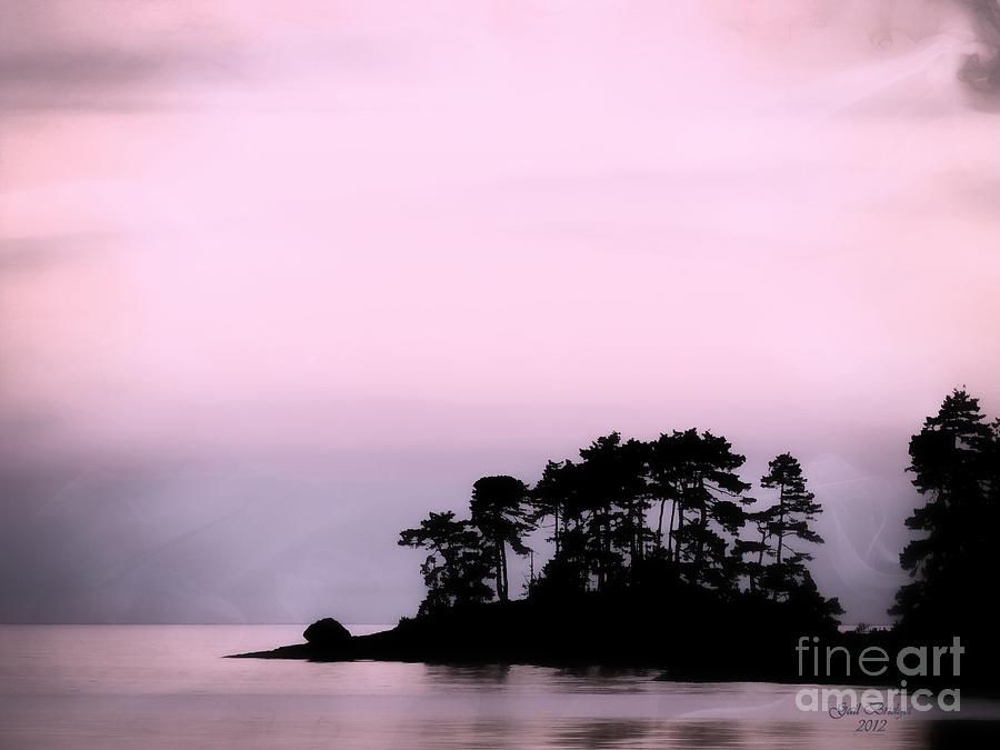 Tranquility Photograph - A Moment Of Tranquility by Gail Bridger