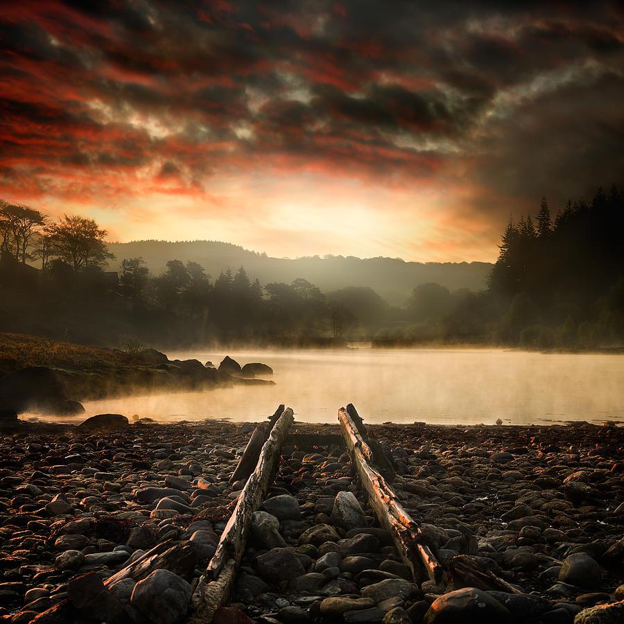 Image Pyrography - A New Beginning by Ian David Soar