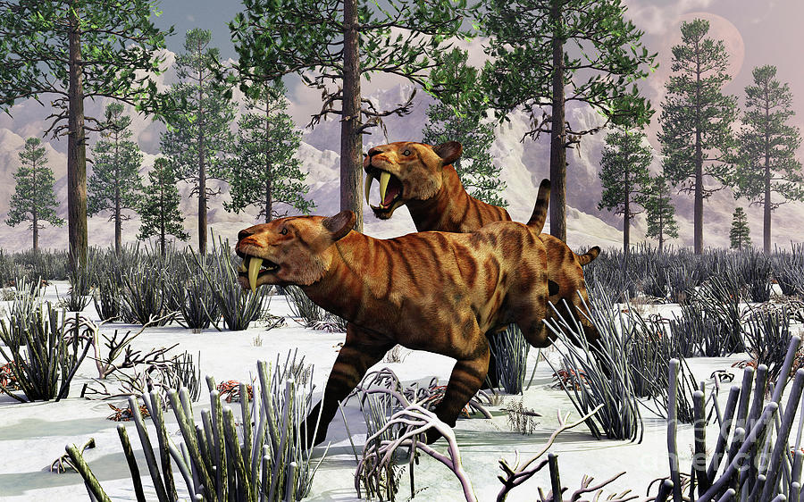A Pair Of Sabre-toothed Tigers Hunting Digital Art by Mark ...
