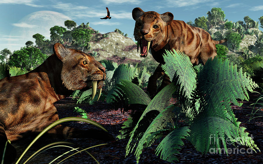 Smilodon Digital Art - A Pair Of Sabre-toothed Tigers by Mark Stevenson