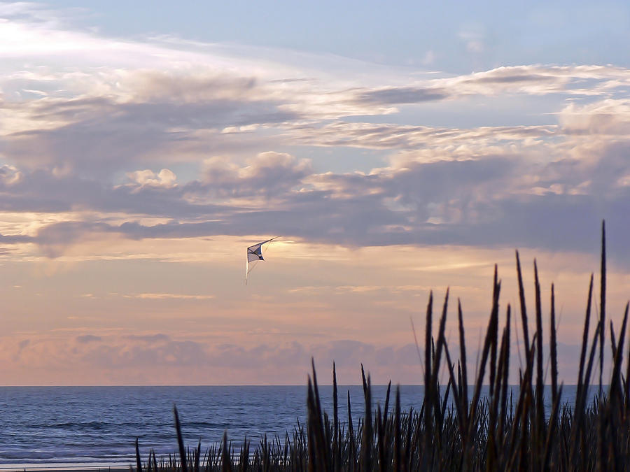 Coast Photograph - A Perfect Day by Pamela Patch