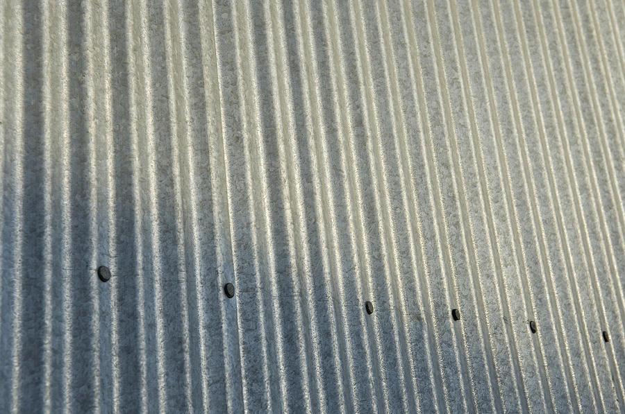 Cortland Photograph - A Piece Of Metal Sheeting At A Sawmill by Joel Sartore