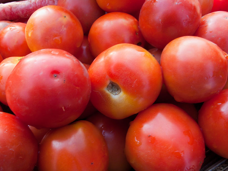 Food Photograph - A Pile Of Luscious Bright Red Tomatoes by Ashish Agarwal
