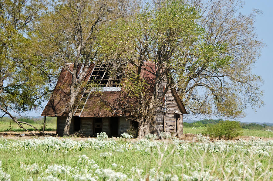 Barns Photograph - A Place Called Home by Lisa Moore