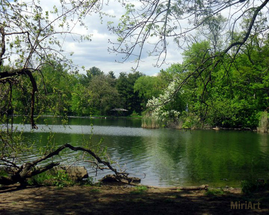 Lake Photograph - A Place To Meditate by Miriam Shaw