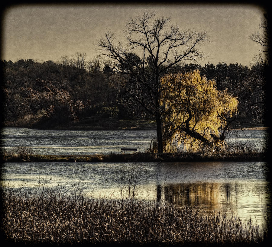 Lake Photograph - A Place To Think by Thomas Young