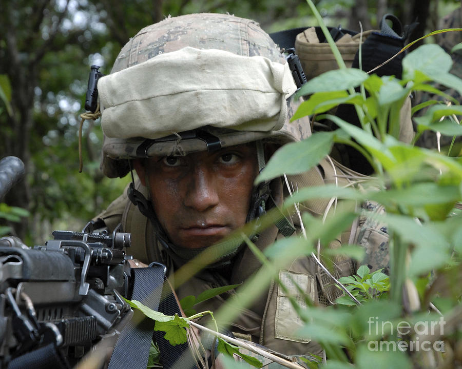 Bush Photograph - A Rifleman Conceals Himself by Stocktrek Images