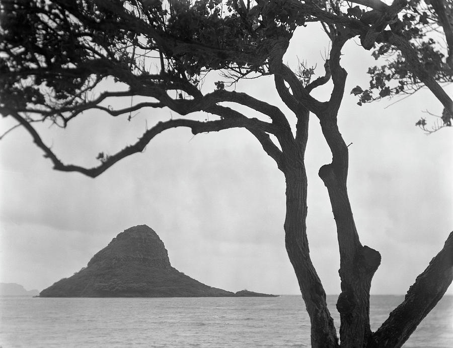 Horizontal Photograph - A Rock Formation In The Pacific Ocean, Oahu, Hawaii by Brian Caissie