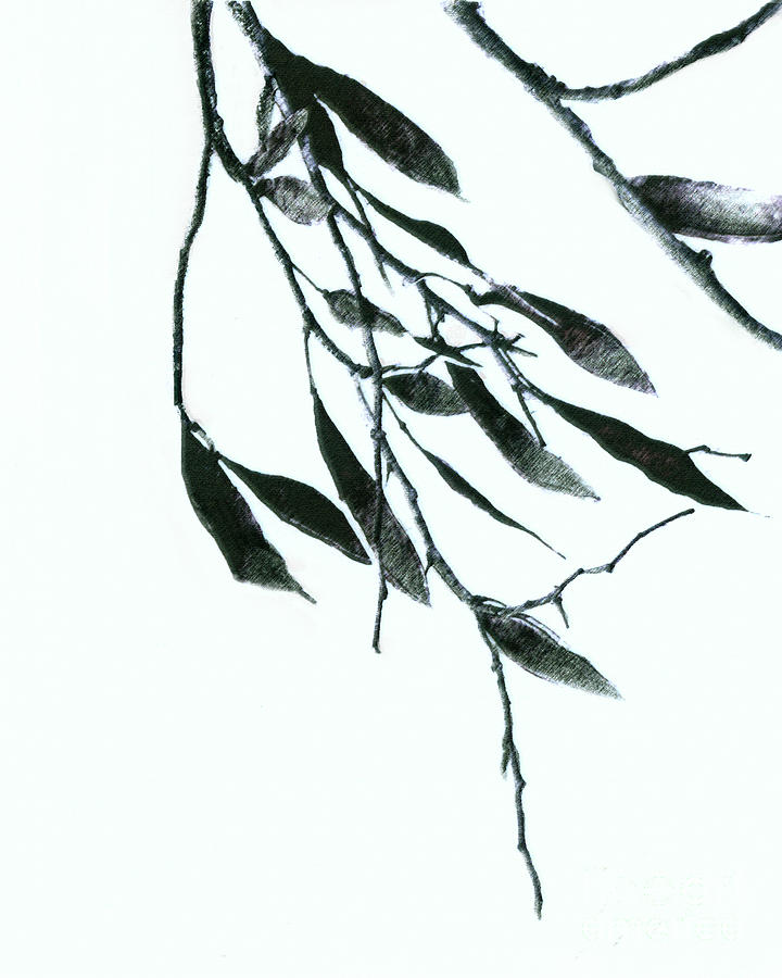 Nature Art Mixed Media - A Single Branch by Ann Powell