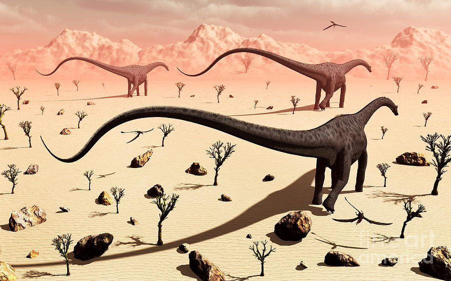 No People Digital Art - A Small Group Of Diplodocus Sauropod by Mark Stevenson