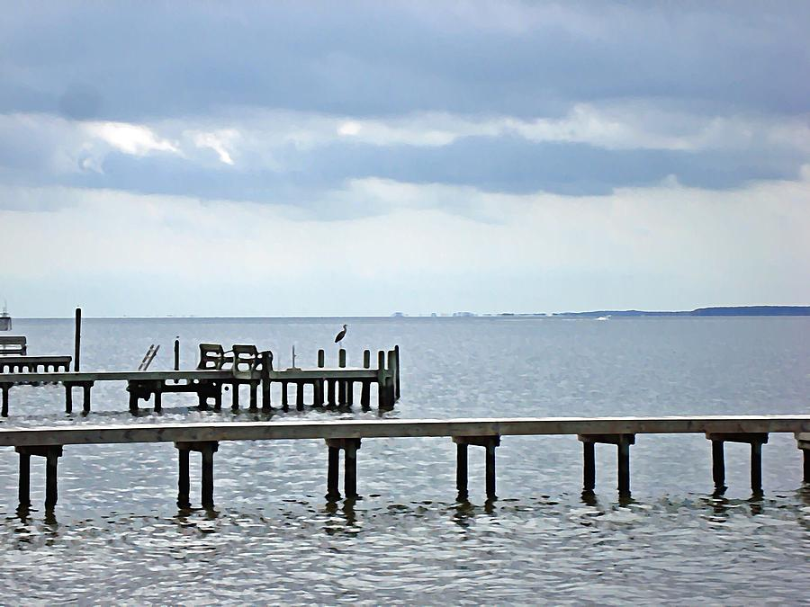 Blue Heron Photograph - A Stormy Day On The Pamlico River by Joan Meyland