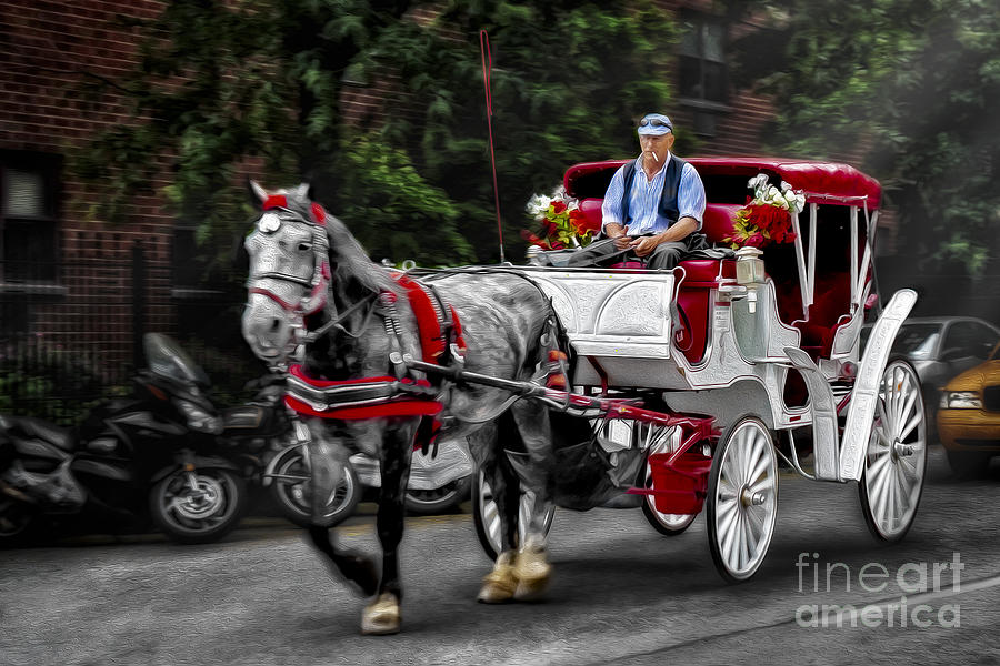 Horse And Carriage Photograph - A Stroll Thru The City by Susan Candelario