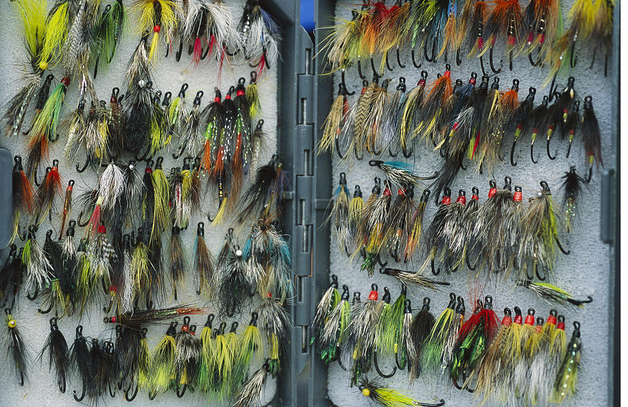 United States Of America Photograph - A Tackle Box Full Of Colorful Flies by Bill Curtsinger
